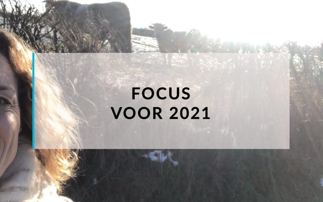 Focus voor groei in 2021
